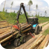 Деревообработка. Технология деревообработки