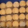 Оцилиндрованное бревно при строительстве деревянного дома, коттеджа