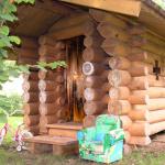Большие дома из бревна