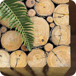 Малый бизнес деревообработка