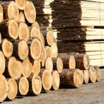 Форум по деревообработке