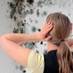 Как подготовить влажные стены к отделке?