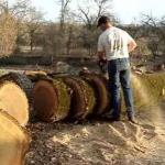Регулировка карбюратора бензопилы штиль 180 видео