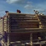 Дома из профилированного бруса из Вологды