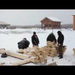 Дома из бруса фирма василек Новгород