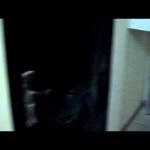 Отделать входную дверь в дом