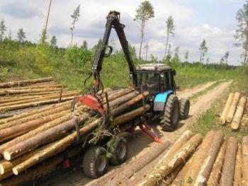 Стратегия развития деревообрабатывающей отрасли